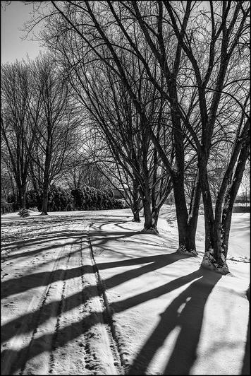 41 Carson P-Shadows-2-2013-02-25__22