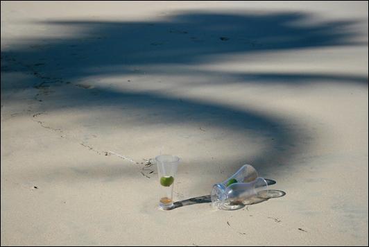 Diane S.-Landscape2 2012 04 24__17 PiF
