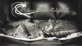 Business Card Melanie Denis